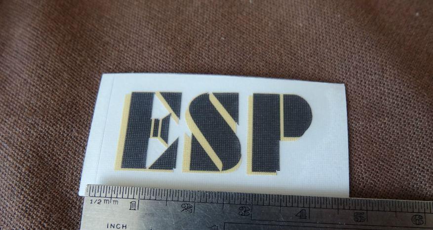 ESP shadow